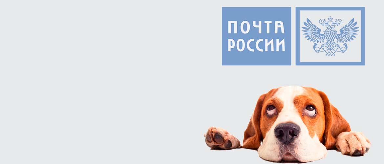 Почта России логотип и собака