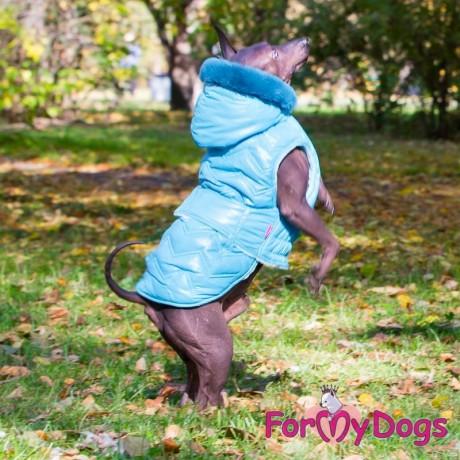Попона голубая для собак купить