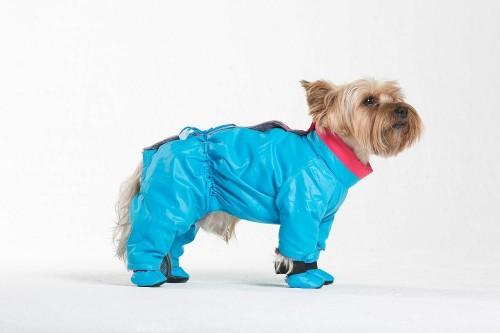 """Комбинезон """"Флирт"""" синий купить для собак"""