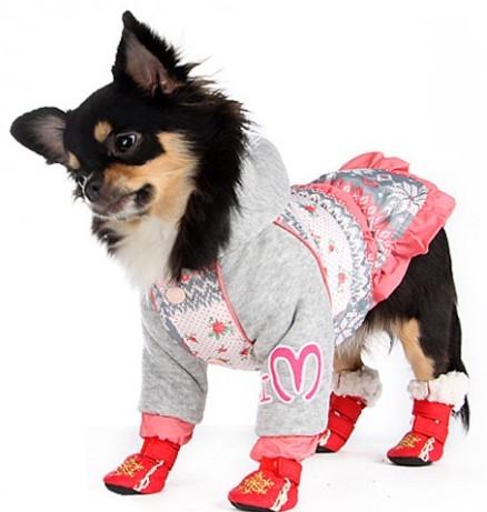 Купить обувь для собак