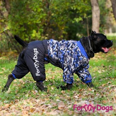 Крупная собака в комбинезоне